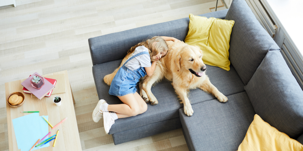 Beat the Summer Heat for Your Pet